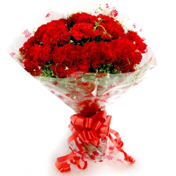Red Carnation Bunch-0