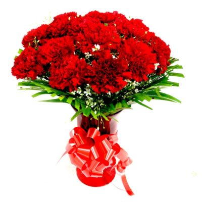 Charming Red Carnations-0