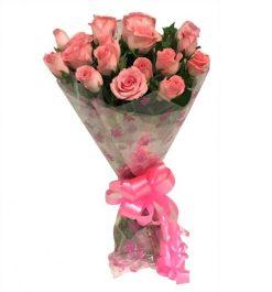 Fresh Pink Roses-0