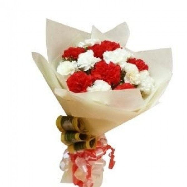 Delightful Red & White Carnations Bouquet-0
