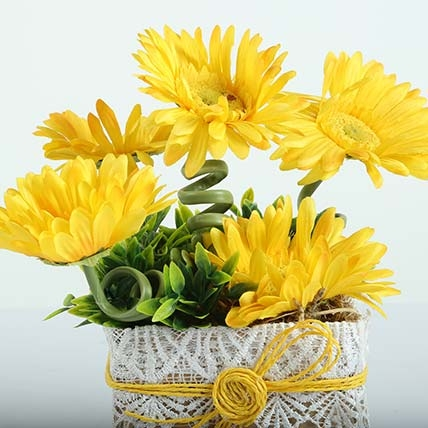 Yellow Gerberas Lover-0