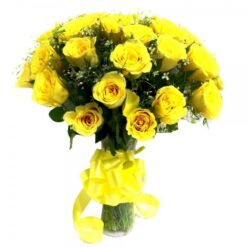 Yellow Roses-0