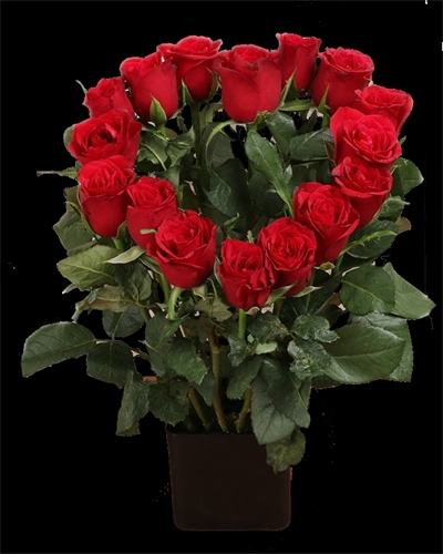 Heart design with Red Roses-0