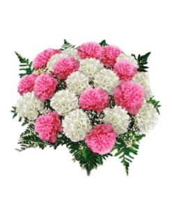 15 White and Pink Carnation with Vase-0