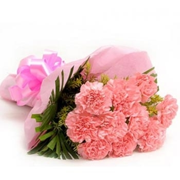 Pink Carnations Bouquet-0