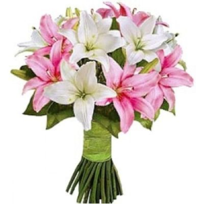 White and Pink Lillies-0