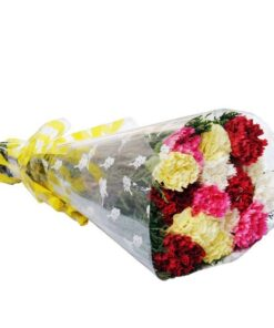 Bunch of Carnations-0