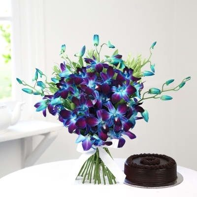 Chocolaty Blue Orchids-0