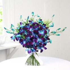Glorious Blue Orchids -0