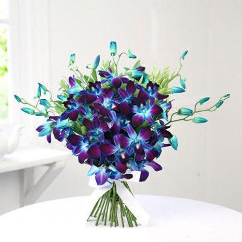 Glorious Blue Orchids -0