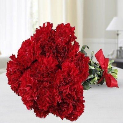 Red Beauty Carnations-0