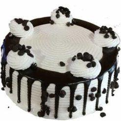 Chocochips Vanilla Cake-0