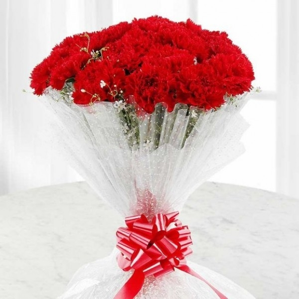 Carnations Pack-0