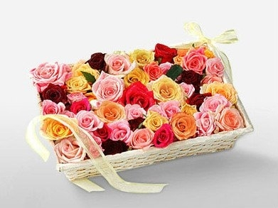 Mixed Color Roses-0
