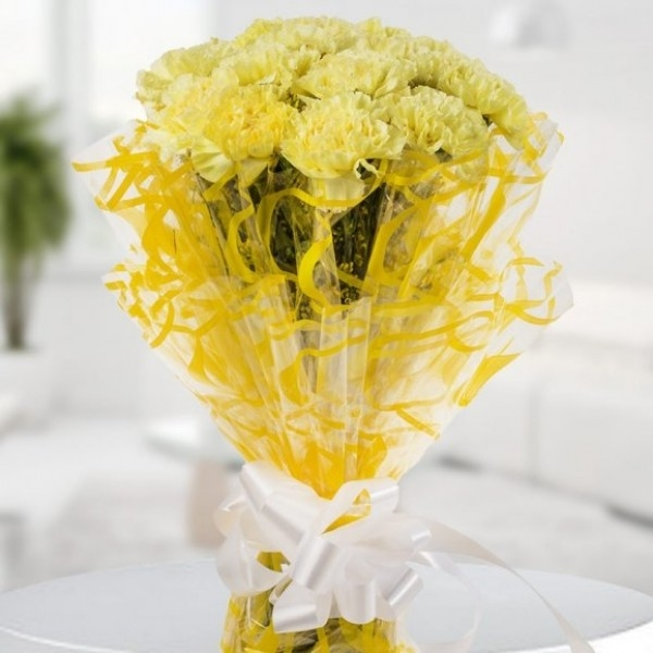 Beauty of Yellow Carnations-0
