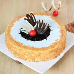 Delicious Butterscotch Cake-459