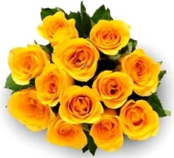 Yellow Roses Bouquet-0
