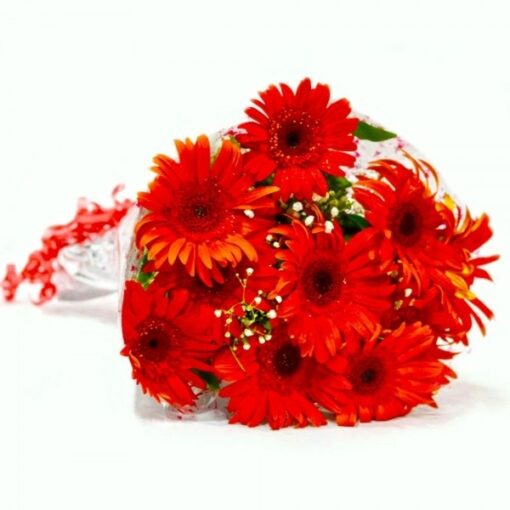 Gerberas for Loved ones-0