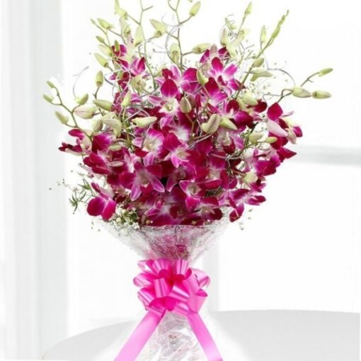 Pink Orchid Happiness-0