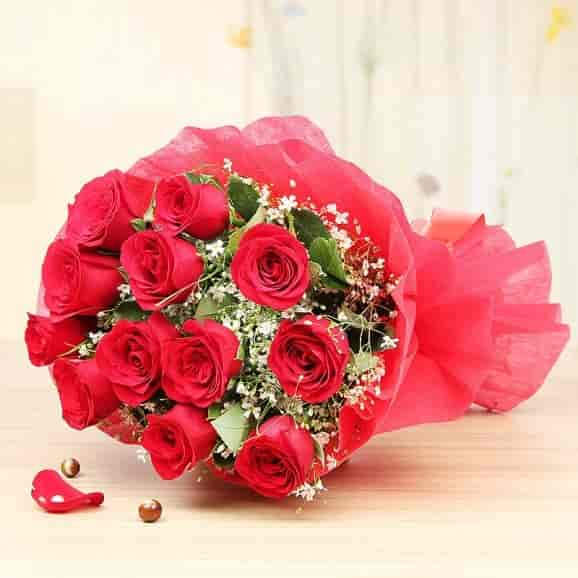 Rose Day - 7th Feb
