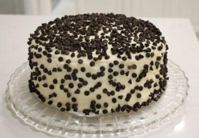 Vanilla Chocochips Cake-0