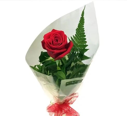 Special Single Rose-0