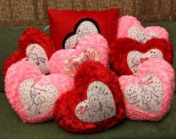 Cushions for Valentines Week