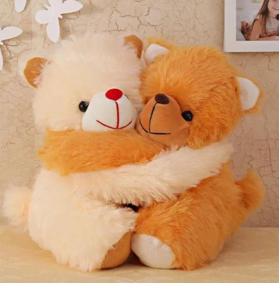 Hug Day Special Teddies