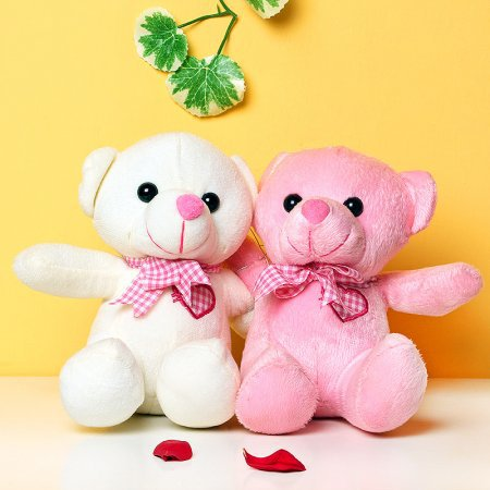 Teddy Couple