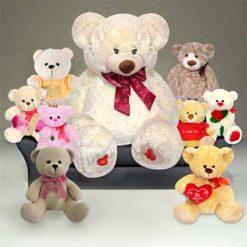 Teddy Set